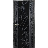 Двери (Стекло триплекс и калёное)